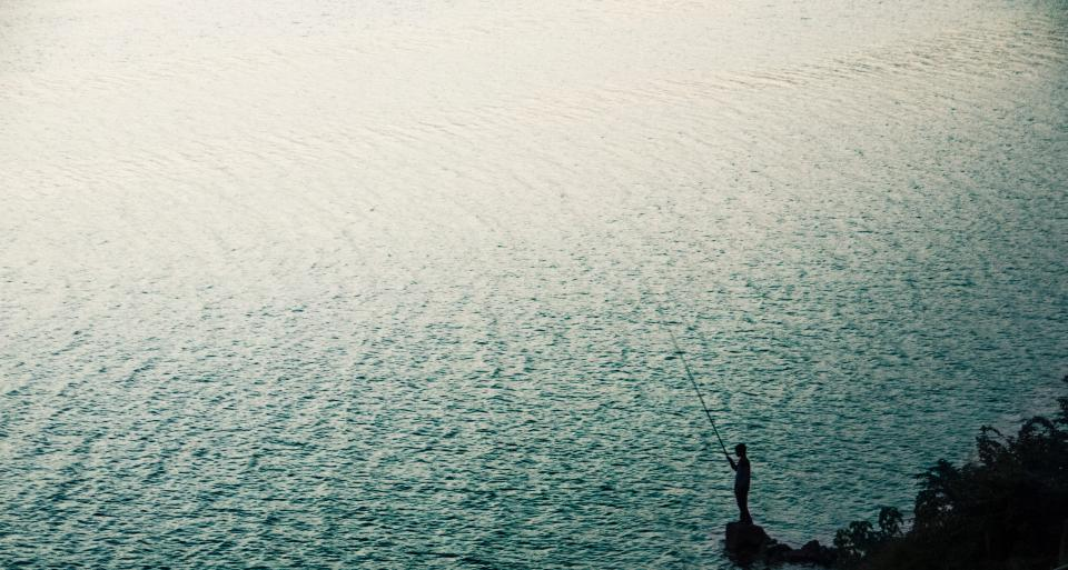Alt om fiske